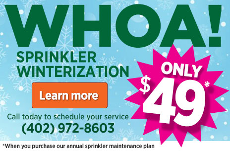 Winterization $49*