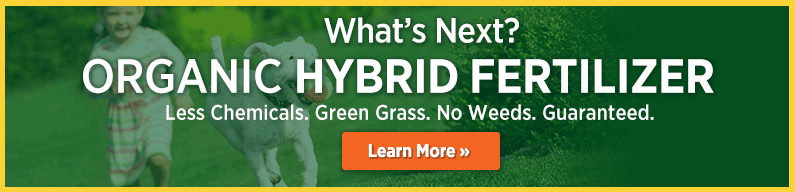 Organic Hybrid Fertilizer